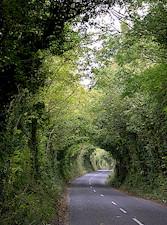 clare-road[1]
