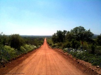 country long dirt road