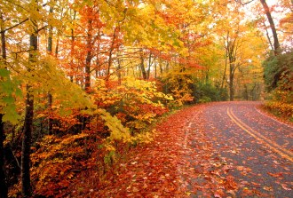 Fall-Road-Trip2[1]